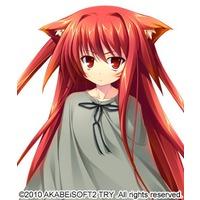 Image of Kasha