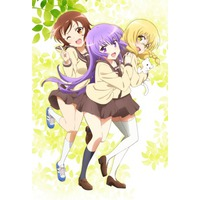 Image of Three Leaves, Three Colors