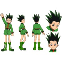 Image of Gon Freecss