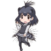 Image of Crested Porcupine