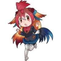 Image of Red Junglefowl