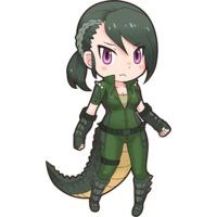 Image of American Alligator