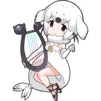 Image of Harp Seal