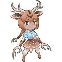 Image of Axis Deer
