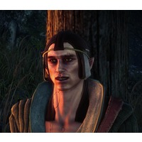 Elven prisoner