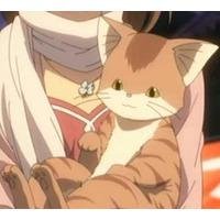 Image of Katsuki Shima (cat form)