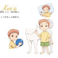 Image of Kuri