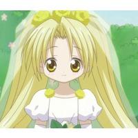 Image of Chiriri