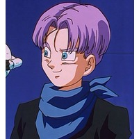 Image of Trunks