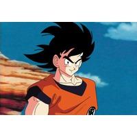 Image of Goku