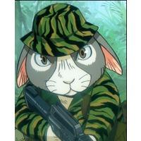 Image of Sgt. Perkins