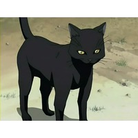 Yoruichi Shihouin (cat form)